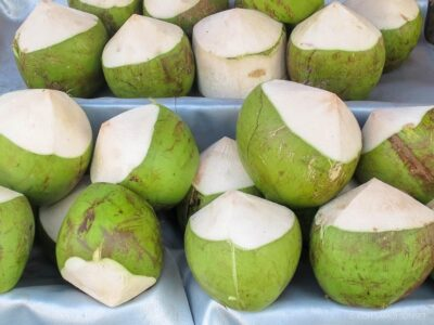 coconut water drmartins