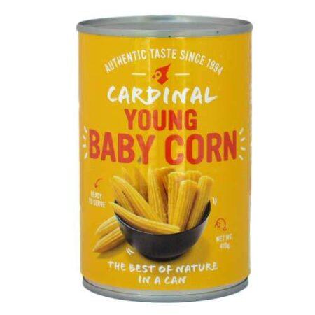 cardinal young baby popcorn