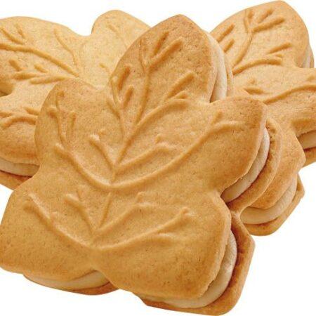 tipi maple leaf cookies