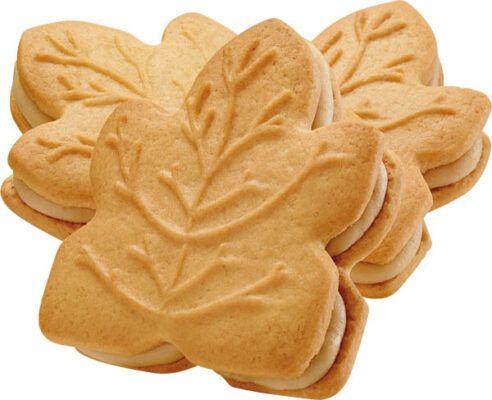 tipi maple leaf cookies 1